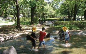 府中の森での水遊びは最高